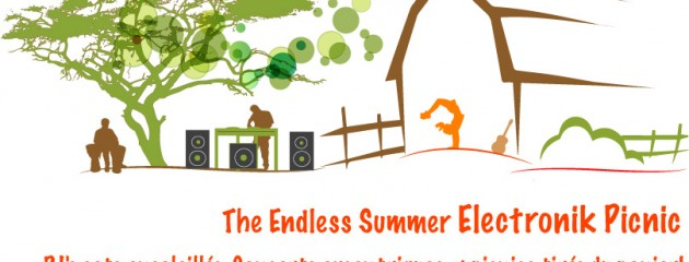 endless summer picnic